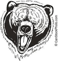 marrón, oso pardo, vector, oso