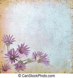 marrón, pasto o césped, viejo, vendimia, ciudadanos, cualesquiera, proyecto, papel, plano de fondo, floral, flores, su