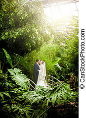Married couple kissing on sunny day at rain forest