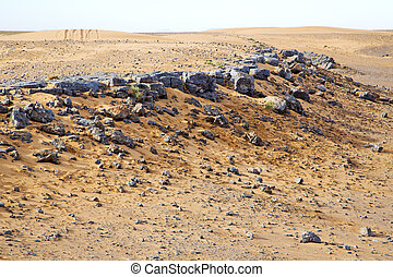marrocos, sahara, fóssil, antigas
