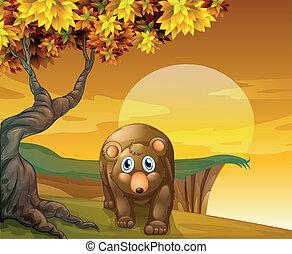 marrom, árvore grande, urso, ao lado, penhasco