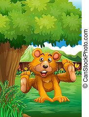 marrom, árvore, urso, sob, quintal, tocando