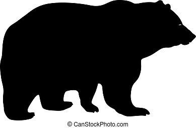 marrom, branca, silueta, fundo, urso