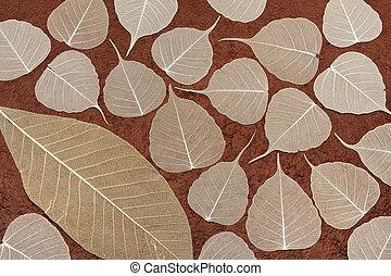 marrom, -, folhas, papel feito à mão, fundo, esquelético, sobre