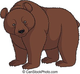 marrom, imagem a cores, isolado, object., bear.
