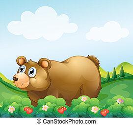 marrom, jardim, urso, moranguinho