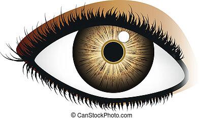 marrom, olho