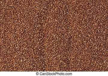 marrom, teff, grãos