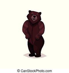 marrom, urso pardo, vetorial, ilustração, caricatura