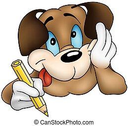 marrone, cucciolo, cane