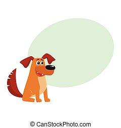 marrone, divertente, casa, cane, cucciolo, carattere, seduta