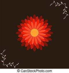 marrone, fiore, sfondo rosso, uno