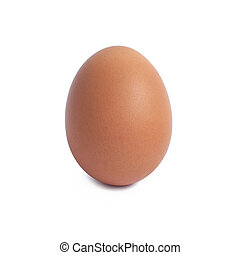 marrone, isolato, singolo, uovo bianco, pollo
