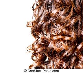 marrone, riccio, isolato, capelli lunghi, white., bordo