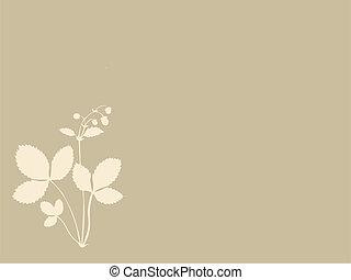 marrone, silhouette, illustrazione, fondo, vettore, fragole