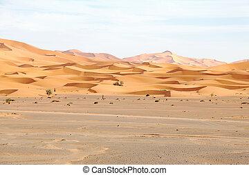 marruecos, ergio, desierto, chebbi
