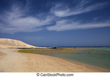 Marsa Mubarak, protected bay of Marsa Alam, Egypt, where can...