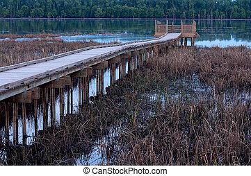 Marsh and Boardwalk along Minnesota River