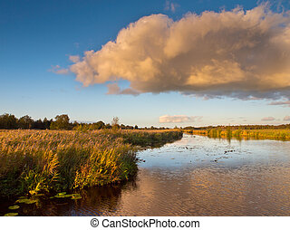 Marsh Country Netherlands - Colorful Sunset over a Swamp in...