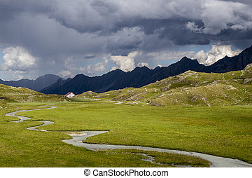 marsh in the alps
