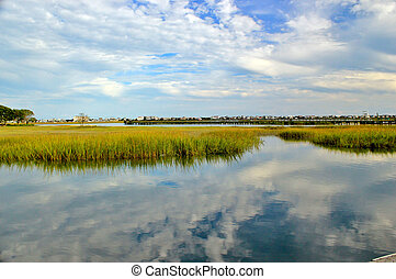 Marsh landscape 4 - Marsh wetlands with a pier in the...