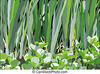 marsh pattern - an illustration of variety of leaves and...