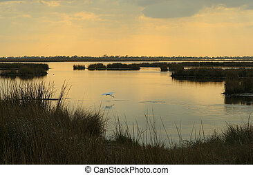 marsh sunset - sunset over marsh, Pointe-aux-Chenes,...