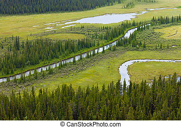 Marshland river riparian wetland landscape - Aerial view of ...