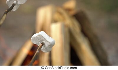 Marshmallow are frying, roasting on the sticks above the...