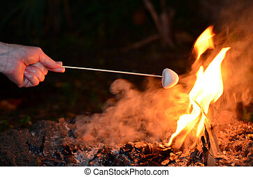 Marshmallow roast on camp fire - Woman hand roast...