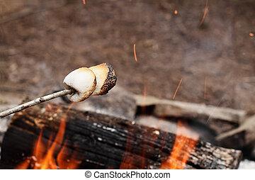 marshmallows, på, a, käpp, över, a, brasa