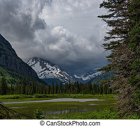 Marshy River in Glacier Wilderness toward gunsight mountain