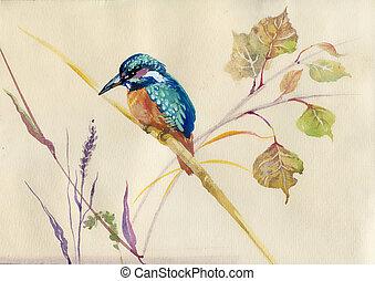 martín pescador, común, pájaro