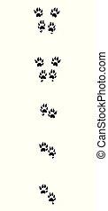 Marten Tracks Black Footprints