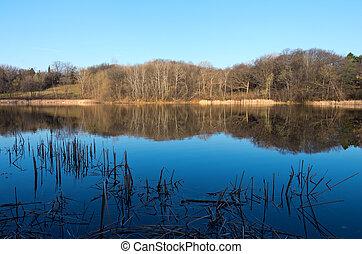 Marthaler Park and Pond Spring Horizon