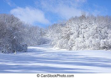 Marthaler Park hills covered with fresh fallen snow in West Saint Paul Minnesota