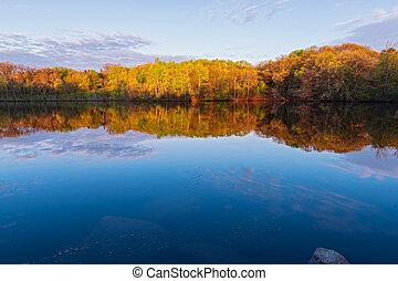 marthaler park woodlands and pond spring sunrise - marthaler...
