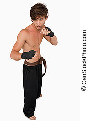 Martial arts fighter in fighting stance