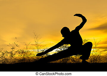 Martial Arts - Image of a Martial Artist in Countryside