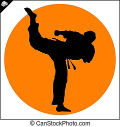 Martial arts. Karate fighter high kick