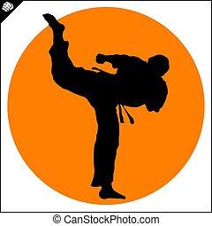 Martial arts. Karate fighter high kick - Fighting combat...