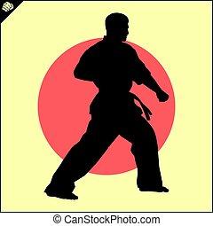 Martial arts. Karate fighter scene. - Fighting combat...