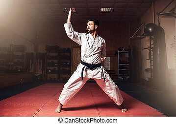 Martial arts master on judo training in gym