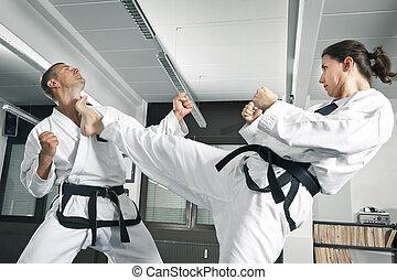 martial arts master - An image of a martial arts master