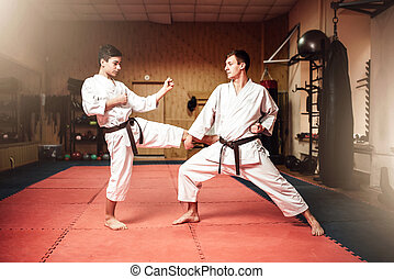 Martial arts masters, self-defence practice in gym - Martial...
