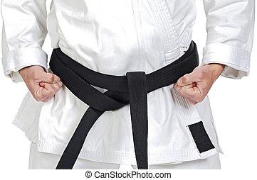 Martial arts pose - Black belt karate expert with rest...
