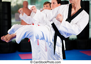Martial Arts sport training in gym - People in a gym in ...
