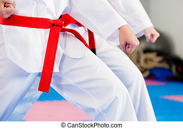 martial arts, sporttraining, in, gym