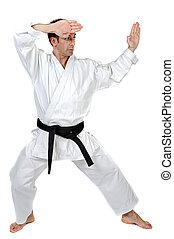 Martial arts stance - Black belt karate expert with fight...
