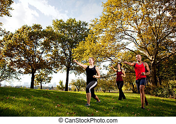 Martial Arts - A group of young adults training martial arts...